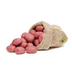 Patata rossa del Casentino
